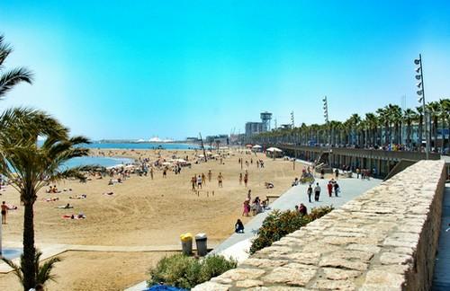 41298376 – barceloneta beach barcelona cataluna spain .